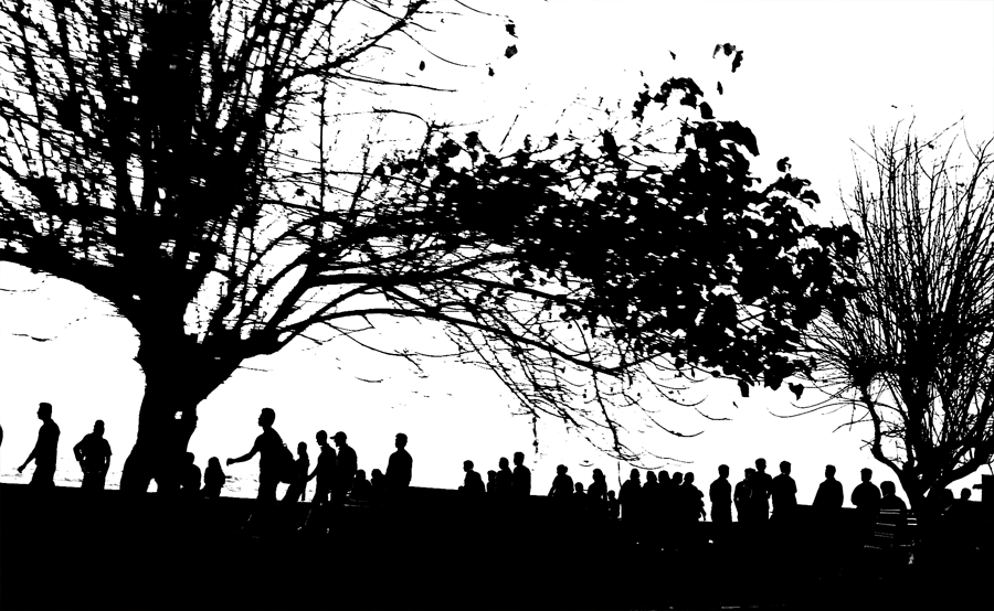 Silhouette of trees and people