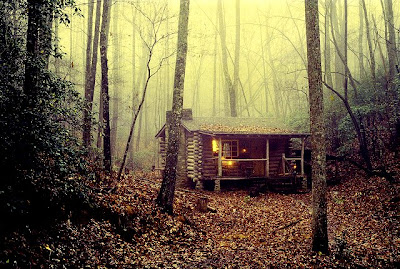 Sadly, For Some Reason He Had The Need To Sell His Little Cabin And Move To  Ashville. He Misses His Life In The Woods More With Each Passing Year.
