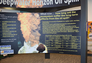 deepwater horizon exhibit