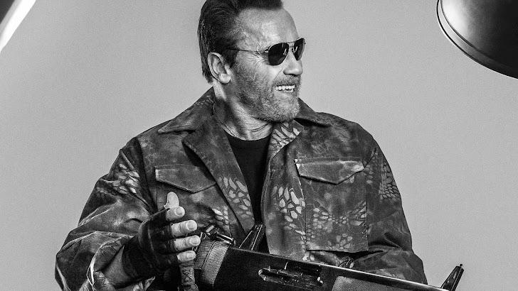 Schwarzenegger Expendables 3