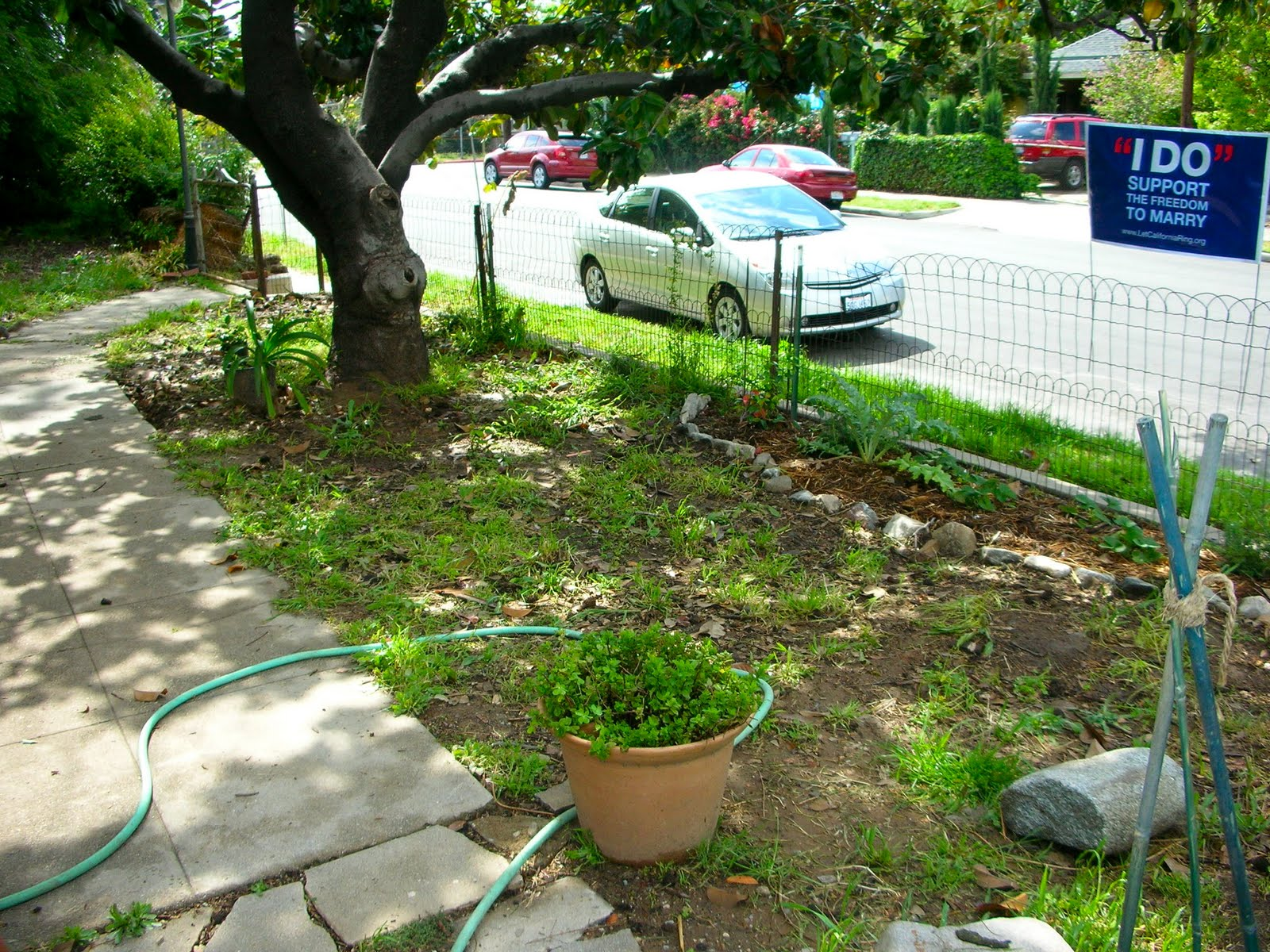 Build A Garden Share Landscaping Ideas Around Trees