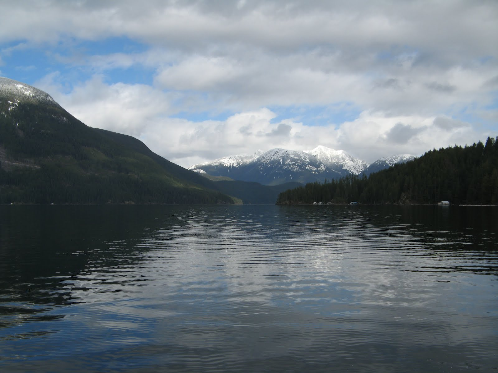 Powell river books blog gone fishin 39 for Where can you get a fishing license