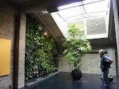 #3 Vertical Garden Ideas