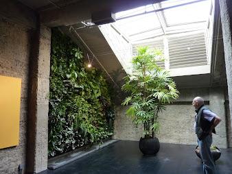#11 Vertical Garden Design Ideas