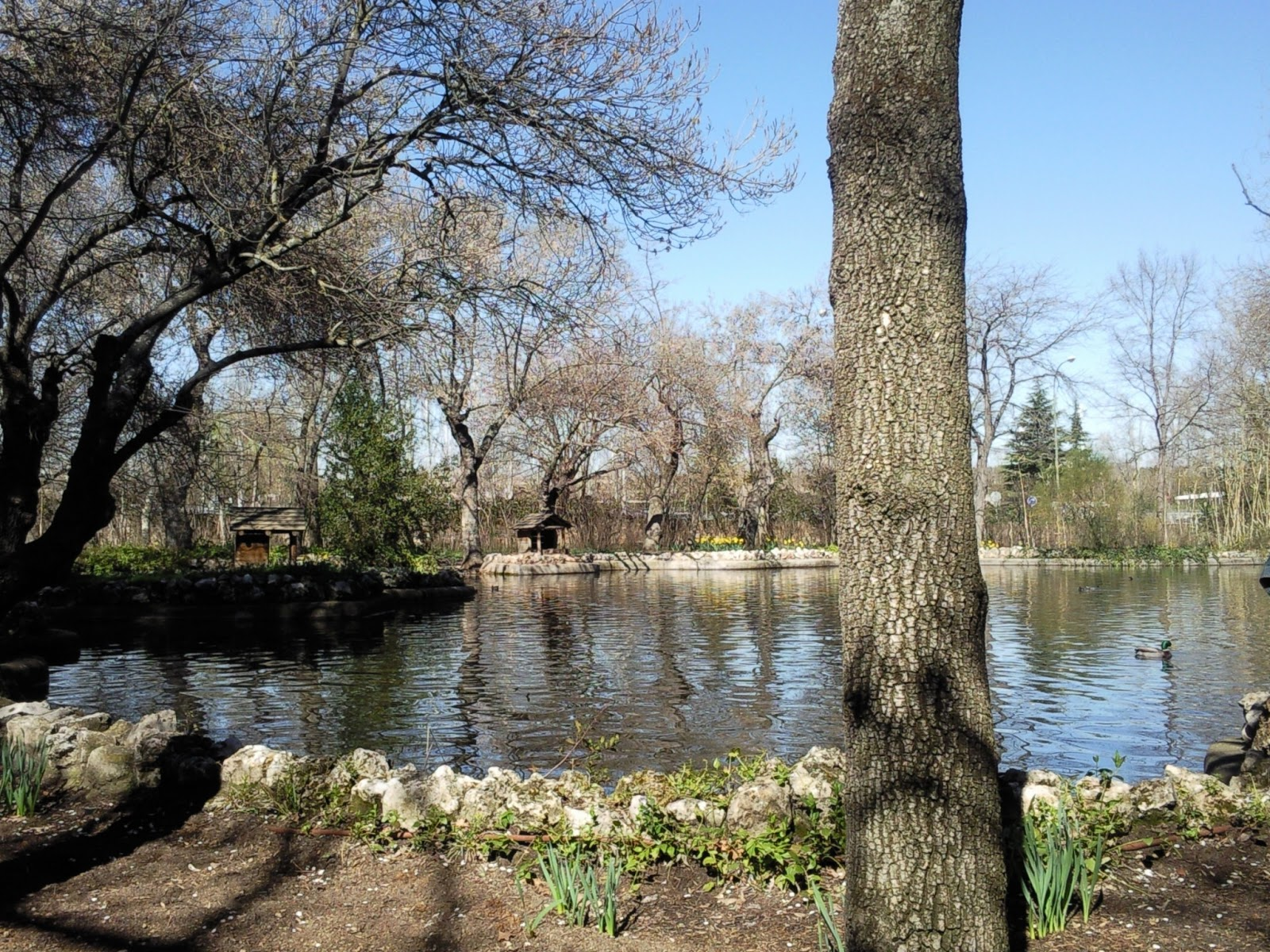 Por la calle de alcal el capricho jard n hist rico for Jardin historico el capricho paseo alameda de osuna 25