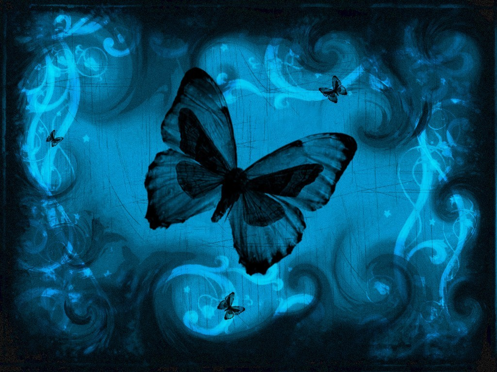 blue butterfly wallpaper 9067 hd wallpapers