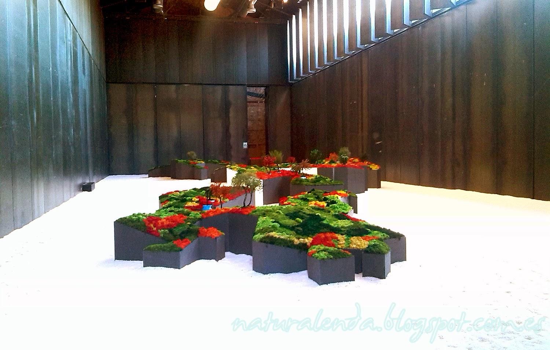 panoramica completa del jardin japones