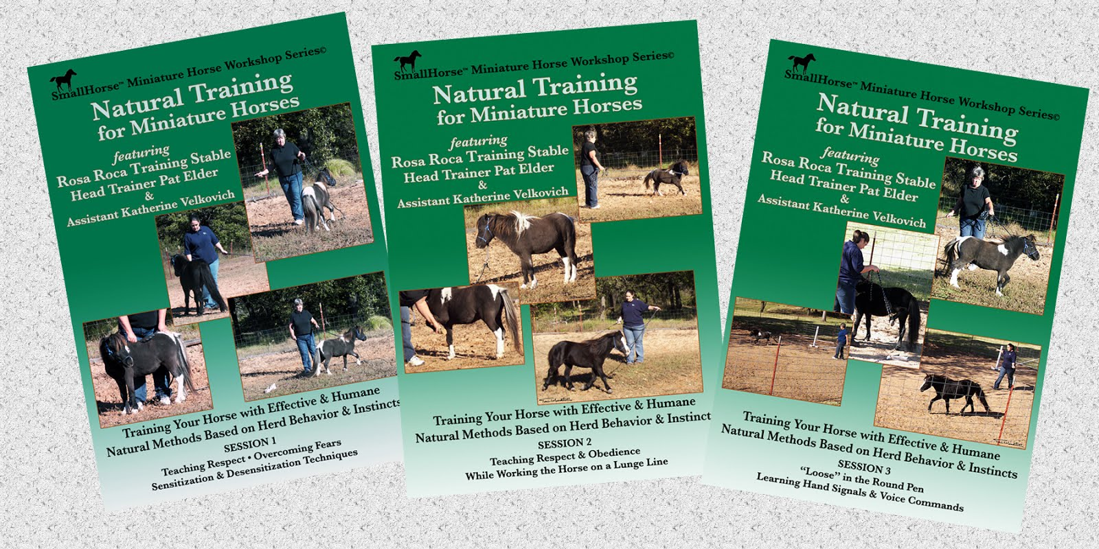 Natural Training for Miniature Horses SET DVD