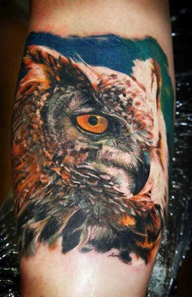 Best Owl Bird Tattoos