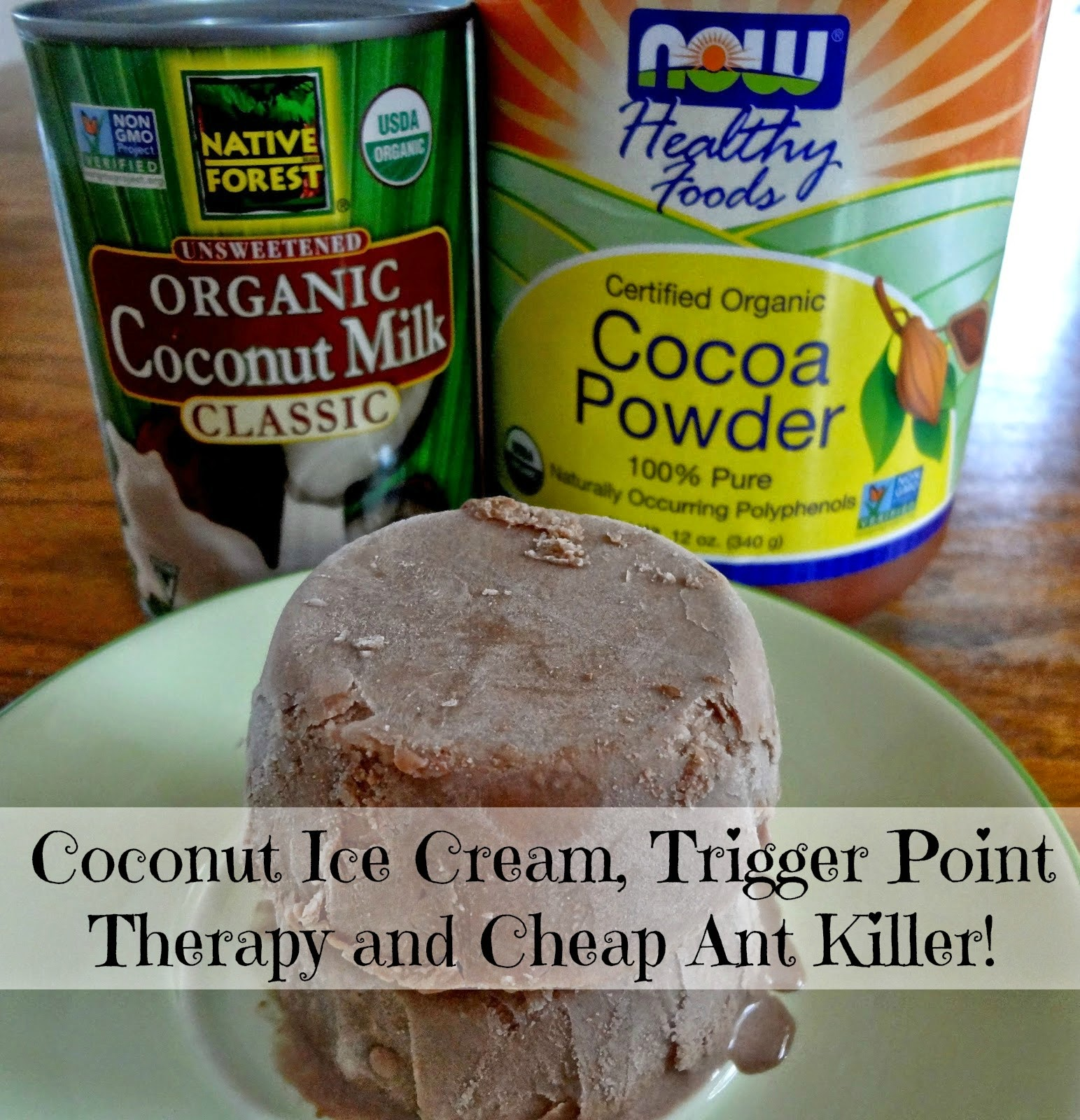how to make coconut milk chocolate ice cream