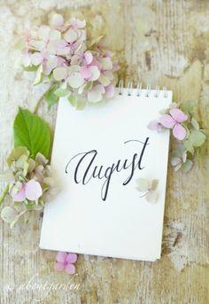 Benvenuto Agosto!
