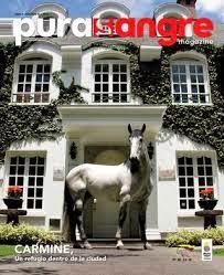 Pura Sangre Magazine