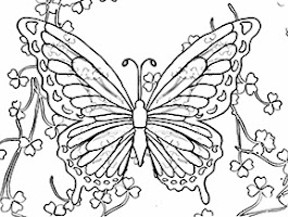 Shamrock Coloring Page Butterfly