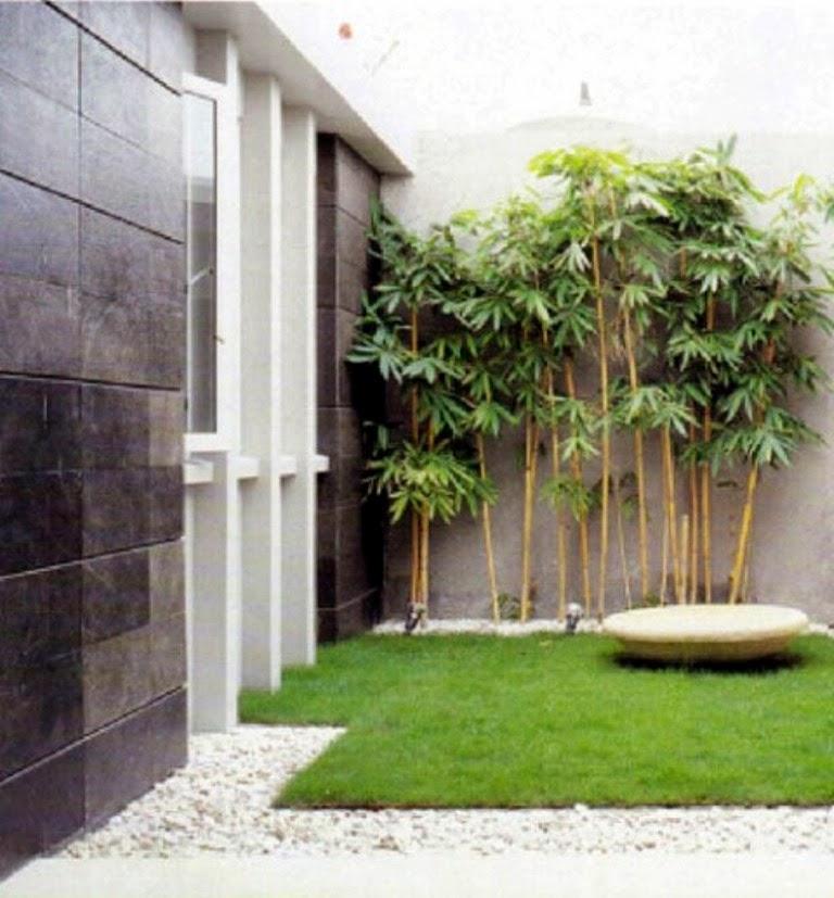taman belakang rumah minimalis taman belakang rumah minimalis disini ...