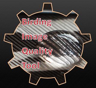 Birding Image Quality Tool