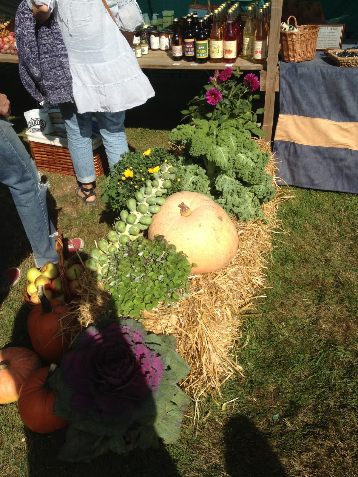 image from Vångabygdens Skördefest - Vanga District's Harvest Festival