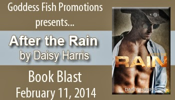 http://goddessfishpromotions.blogspot.com/2013/11/virtual-book-blast-after-rain-by-daisy.html