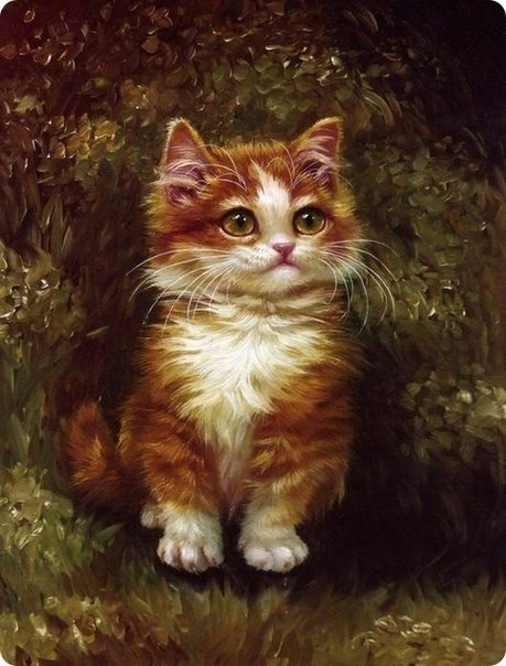 Il mondo di mary antony dipinti cinesi ad olio di gatti - Olio di ruta repellente gatti ...