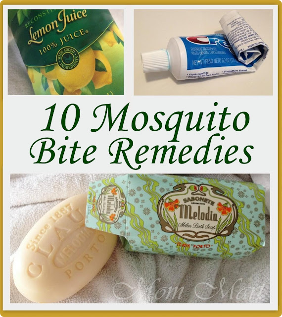 10 Mosquito Bite Remedies - Mom Mart