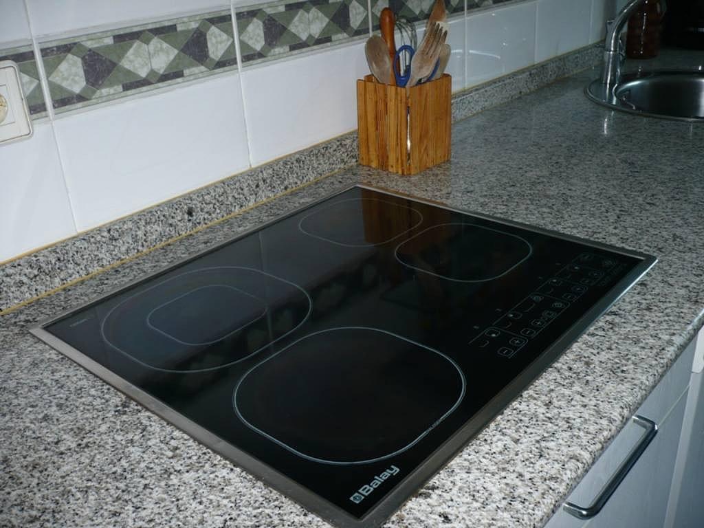 Tecnolog a de inducci n - Cocinar con wok en vitroceramica ...