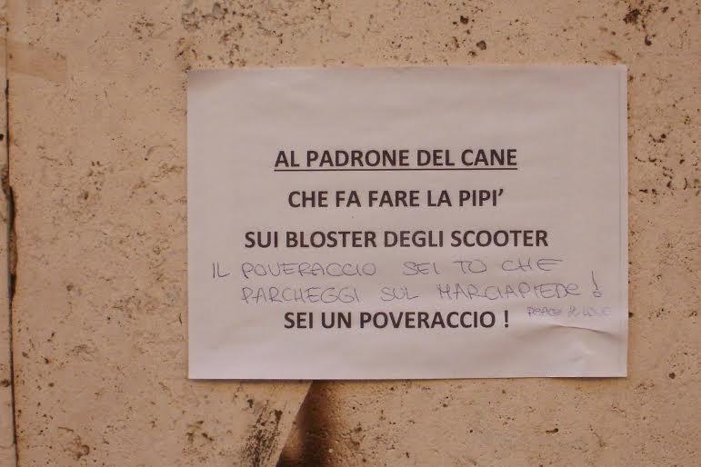 Roma fa schifo roma l 39 unico posto dove la gente normale - Quando fare il primo bagno al cane ...