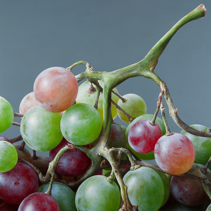 06-Grapes-Antonio-Castelló-Avilleira-Visual-Art-with-Hyper-Realistic-Paintings-www-designstack-co
