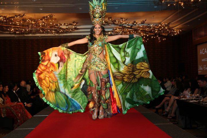 Top 5 Favorite National Costume from Miss Earth 2011  sc 1 st  Indonesian Pageants International & Top 5 Favorite National Costume from Miss Earth 2011 - Indonesian ...