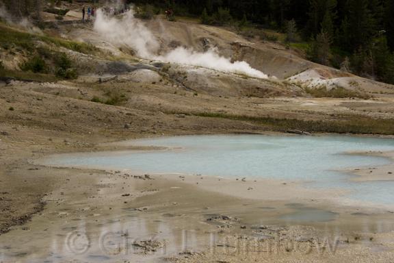 Scummy Pool, Porcelain Basin, Norris Geyser Basin, Yellowstone National Park