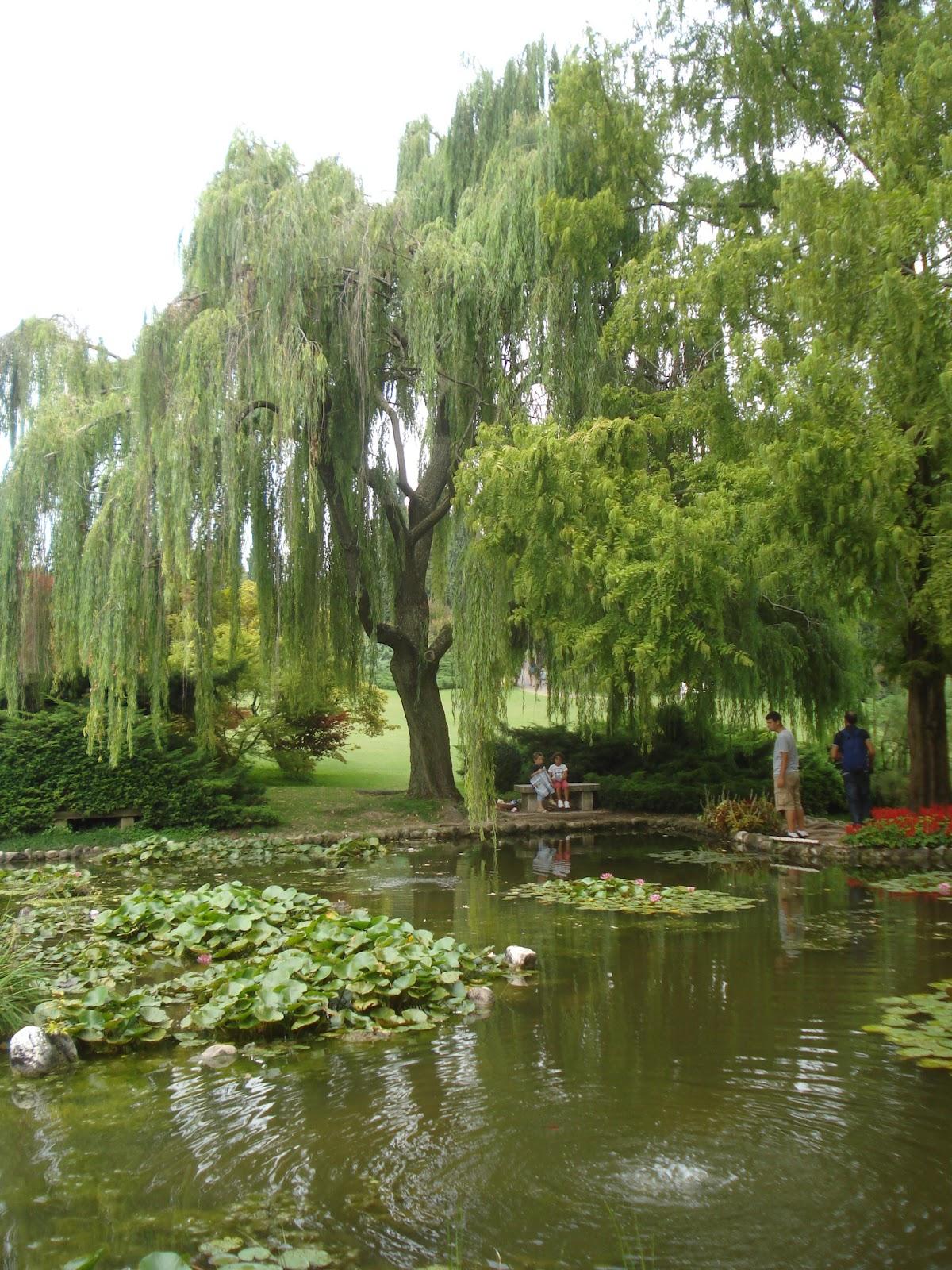 Il giardino delle naiadi il giardino feng shui - Giardino feng shui ...