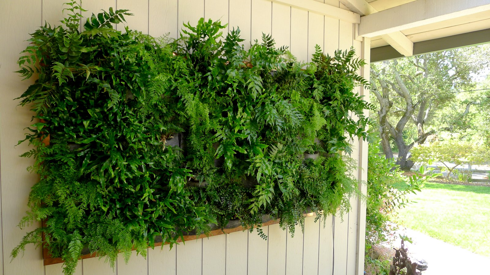plants on walls vertical garden systems may 2012. Black Bedroom Furniture Sets. Home Design Ideas
