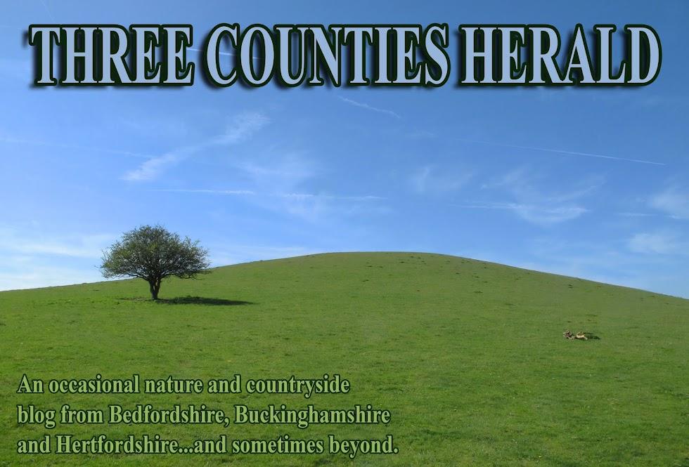Three Counties Herald