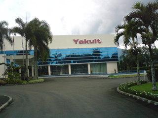 Lowongan Kerja 2013 Terbaru PT Yakult Indonesia Persada Untuk Lulusan SMA Sederajat, D3 dan S1 Semua Jurusan Desember 2012