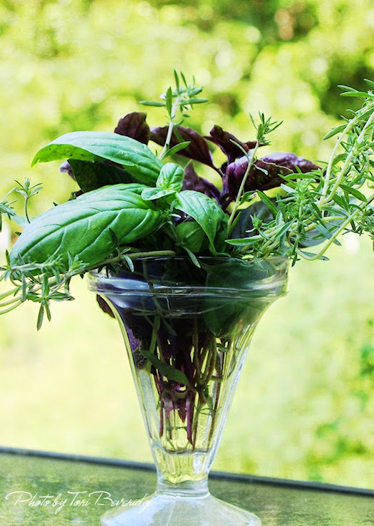 Basil and Summer Savory Bouquet 1 Photo by Tori Beveridge AHWT