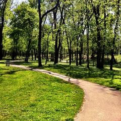 summer scene of brown park with winding walkway and green grass and green trees all around