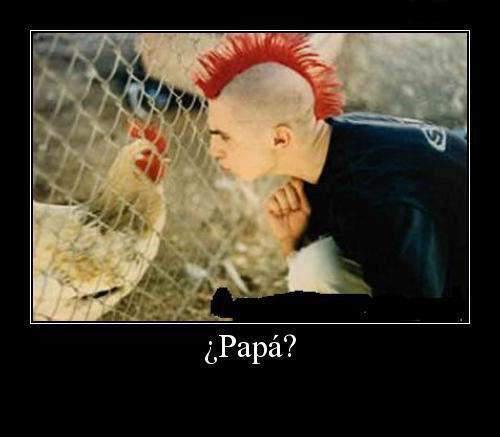 imagenes chistosas del papa - fotos con frase chistosas del papa francisco Resultados de