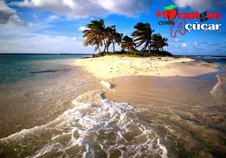 Wallpaper dos Morangos com Açucar Logotipo Símbolo da série juvenil em fundo de tela Ilha Paraíso