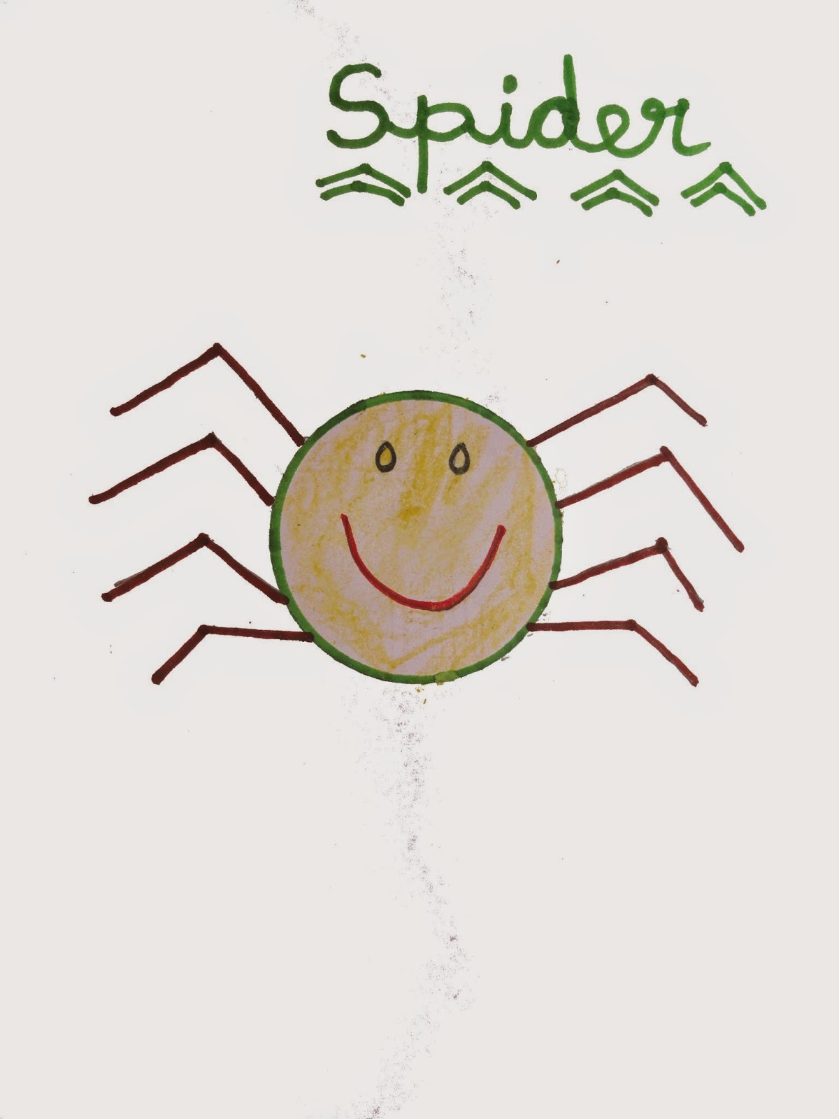 spider drawing and facts - Fun Drawings For Kids