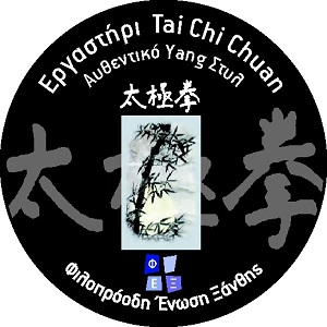 Ergastiri of Tai Chi Chuan , Progressive Association of Xanthi, FEX, Xanthi Greece