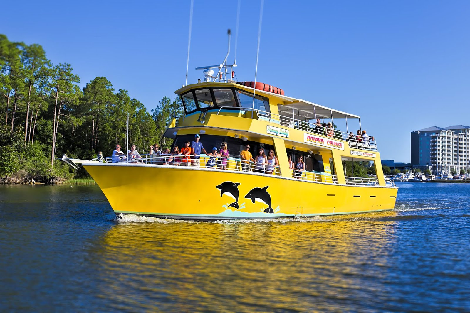 Best Dolphin Tours Gulf Shores