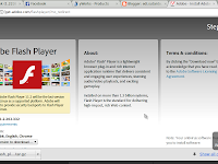 memperbarui plugin flashplayer pada blankon pattimura