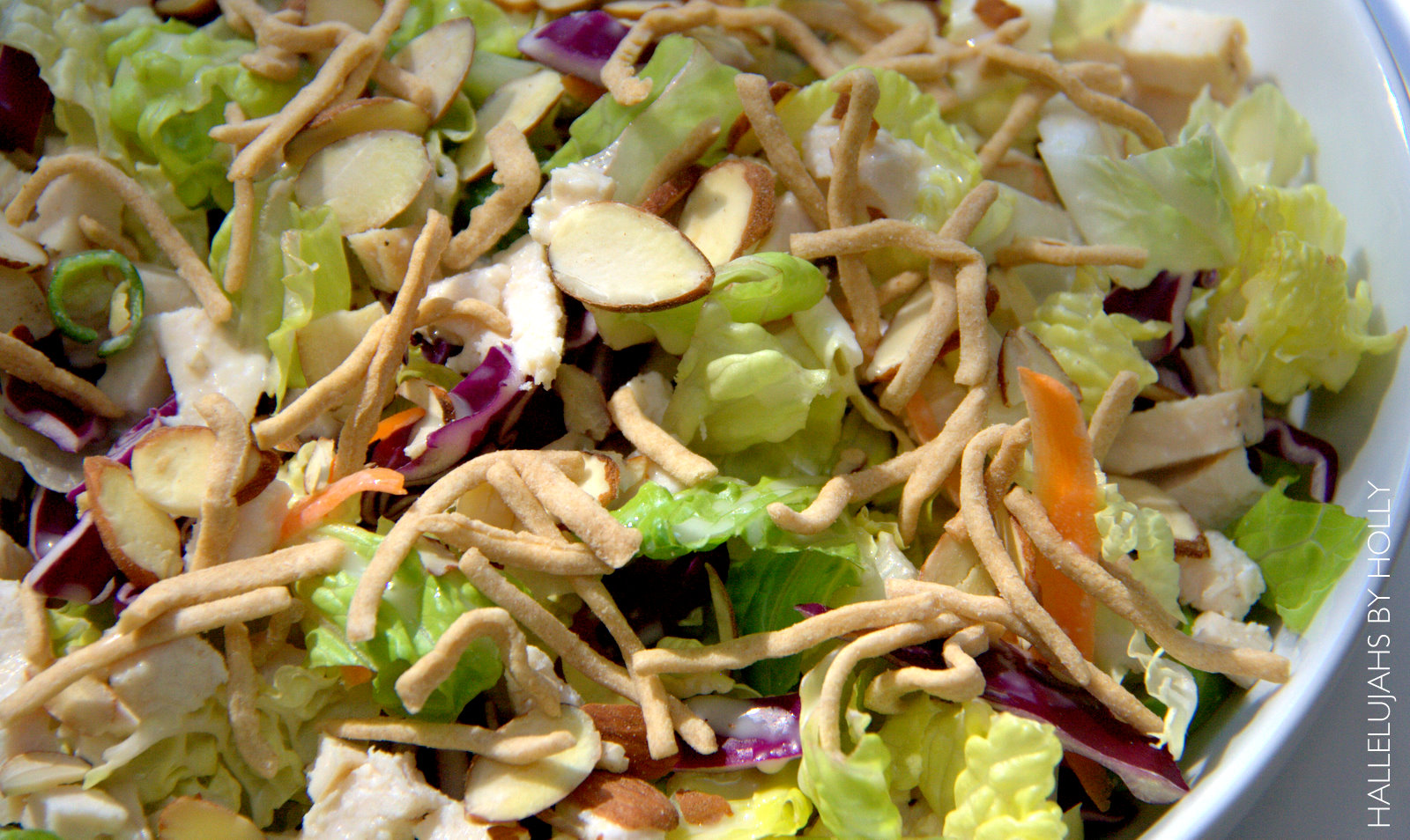 Applebees Grilled Chicken Oriental Salad - CopyKat Recipes