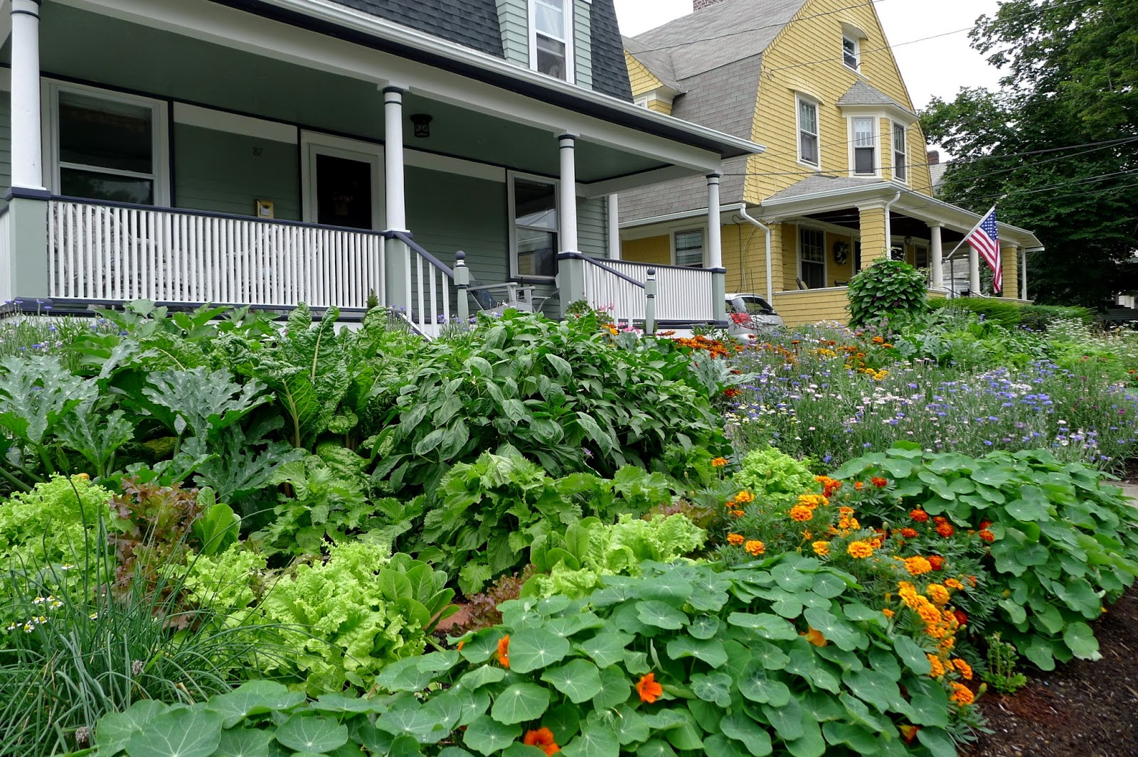 Less Noise, More Green: Edible Landscape Project