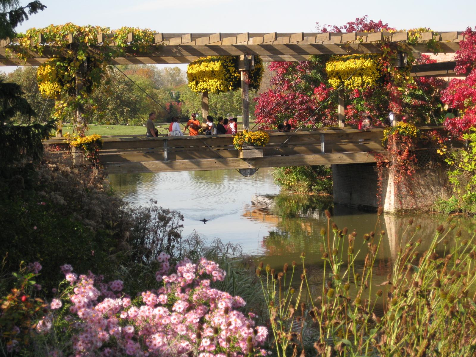 Think Global, Garden Local: Fall at the Chicago Botanic Garden