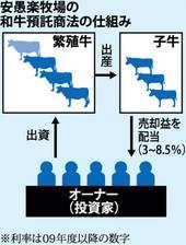 詐欺被害に遭ったら | 日本で、海外で。目指せスマ …