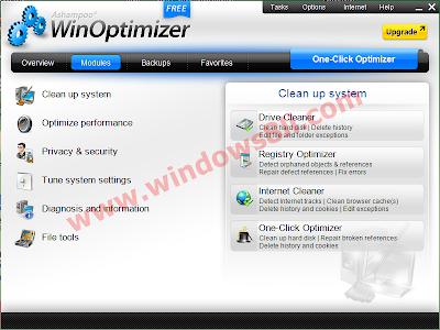 WinOptimizer