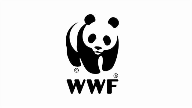 """Ratusan NGO Tuding WWF Lakukan """"Greenwashing"""""""