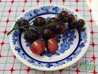 czarny i fioletowy pomidor na talerzu