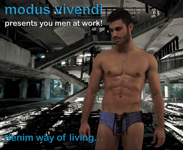 modus vivendi blue denim line briefs