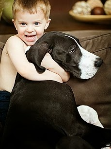 10 Tips to Prevent Dog Bites: What Kids Need to Know
