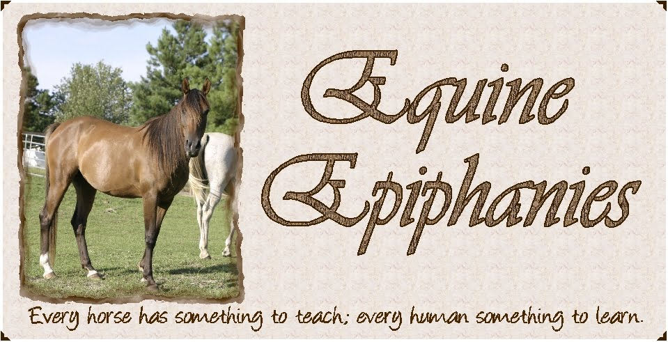 Equine Epiphanies...